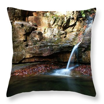 The Blue Hole In November #2 Throw Pillow by Jeff Severson