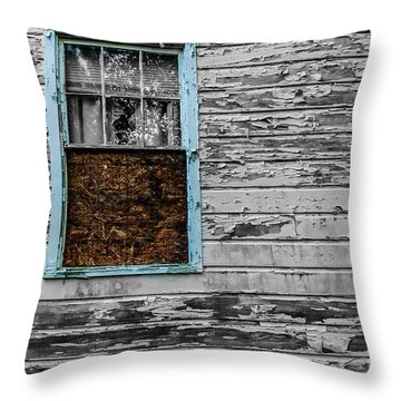 The Blue Window Throw Pillow