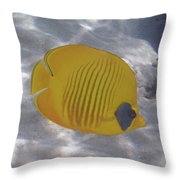 The Bluecheeked Butterflyfish Red Sea Throw Pillow