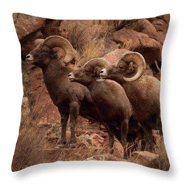 The Boys Throw Pillow