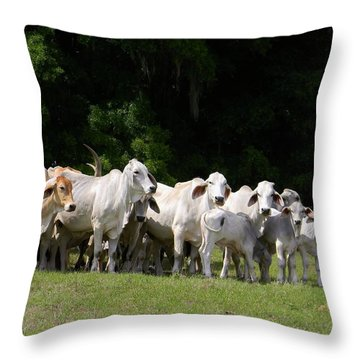 The Brahman Group Throw Pillow