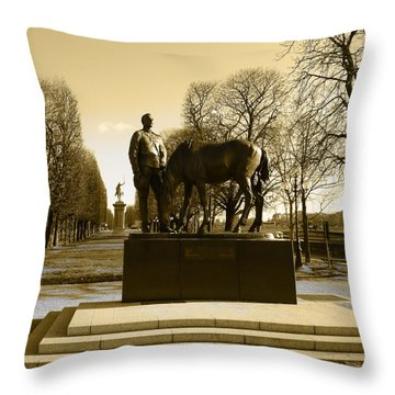 The Brave Soldier Throw Pillow