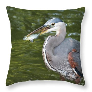 The Breadwinner Throw Pillow