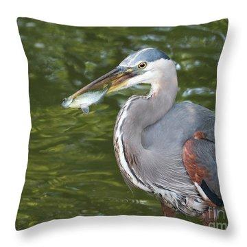 The Breadwinner Throw Pillow