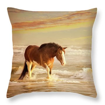 The Break Of Dawn Throw Pillow