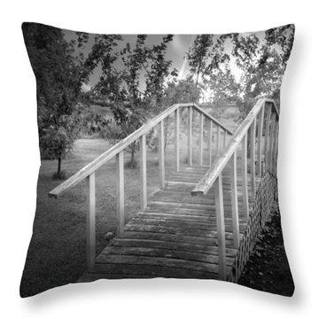 The Bridge 2 Throw Pillow by John Krakora