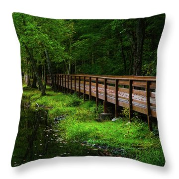 Throw Pillow featuring the photograph The Bridge At Wolfe Park by Karol Livote