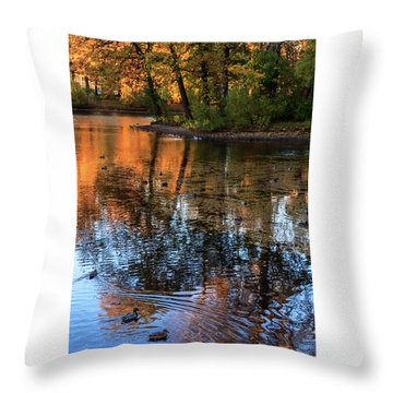 The Bright Colors Of Autumn, Quiet Evenings Are Reflected In The Waters Of The City Pond Throw Pillow