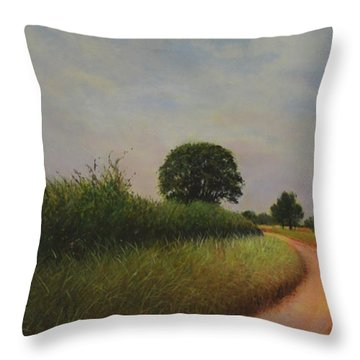 The Brighter Road Ahead Throw Pillow