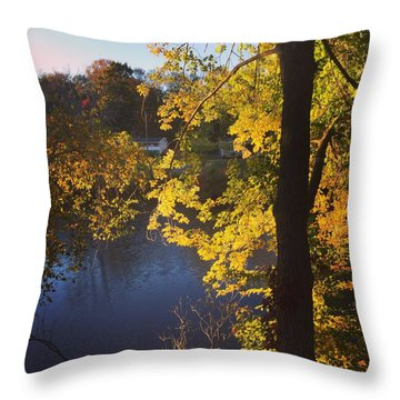 The Brilliance Of Nature Leaves Me Speechless Throw Pillow by Jason Nicholas