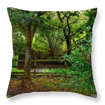The Brook At Gibbon's Bridge Throw Pillow