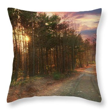 Throw Pillow featuring the photograph The Brown Path Before Me by Lori Deiter