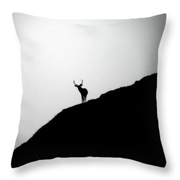 The Buck II Throw Pillow