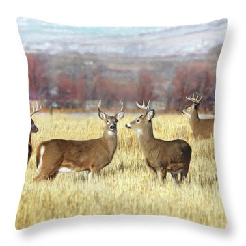 Throw Pillow featuring the photograph The Bucks Stop Here White-tail Deer  by Jennie Marie Schell