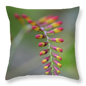 The Budding Arch Throw Pillow