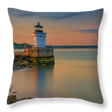 The Bug Light Throw Pillow