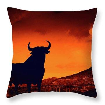 Spanish Throw Pillow