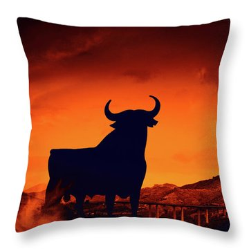 Spanish Throw Pillow