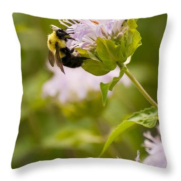 The Bumble Bee Throw Pillow by Chad Davis