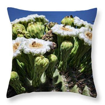 Throw Pillow featuring the photograph The Busy Little Bees On The Saguaro Blossoms  by Saija Lehtonen