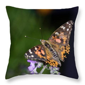 Throw Pillow featuring the photograph The Butterfly Effect by Alex Lapidus