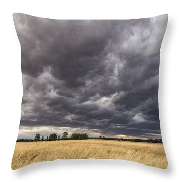 The Calm Before The Storm Throw Pillow by Linda Lees