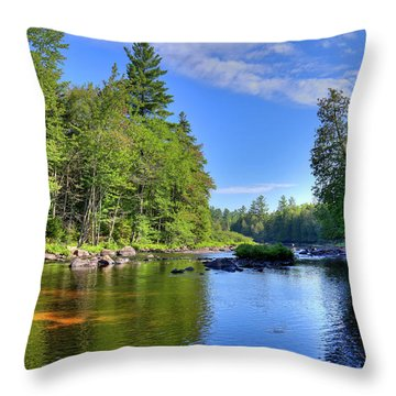 Throw Pillow featuring the photograph The Calm Below Buttermilk Falls by David Patterson