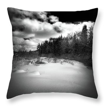 Throw Pillow featuring the photograph The Calm Of Winter by David Patterson