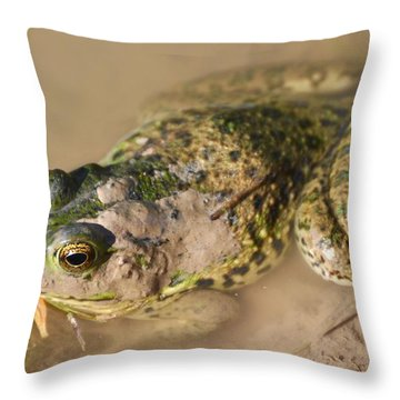 The Camouflage Frog Throw Pillow
