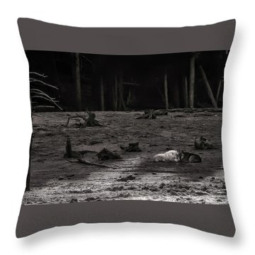 The Canyon Alphas B/w Throw Pillow