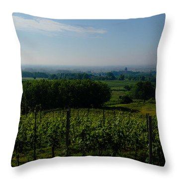 The Castle And Its Lands Throw Pillow by Cesare Bargiggia