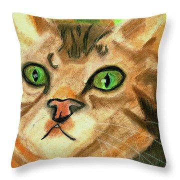 The Cat Face Throw Pillow