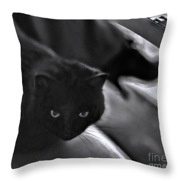 The Cat In The Cafe II Throw Pillow