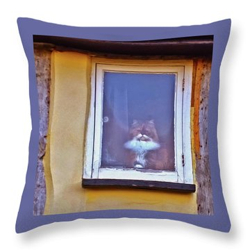 The Cat In The Window Throw Pillow