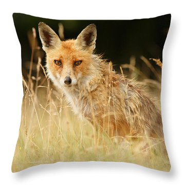 The Catcher In The Grass - Wild Red Fox Throw Pillow by Roeselien Raimond