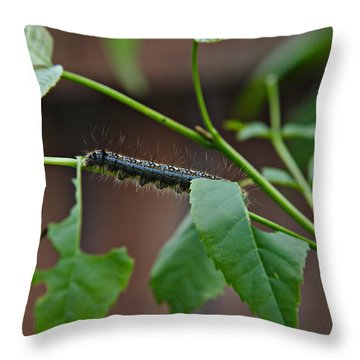 Throw Pillow featuring the photograph The Caterpillar 2 by Cendrine Marrouat