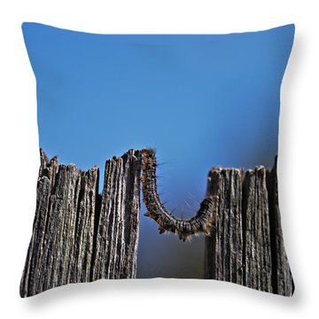 Throw Pillow featuring the photograph The Caterpillar by Cendrine Marrouat