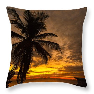 Throw Pillow featuring the photograph The Changing Light by Don Durfee