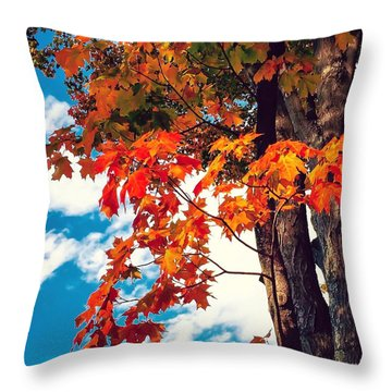The  Changing  Throw Pillow by MaryLee Parker