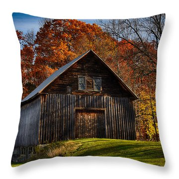The Chester Farm Throw Pillow by Tricia Marchlik