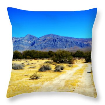 The Chicago Valley Throw Pillow