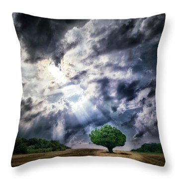 Throw Pillow featuring the photograph The Chosen by Mark Fuller
