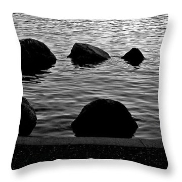 The Circle Throw Pillow by Brian Chase