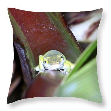 The Climb Throw Pillow by Karen Wiles