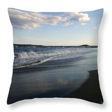 The Coast Throw Pillow by Shana Rowe Jackson