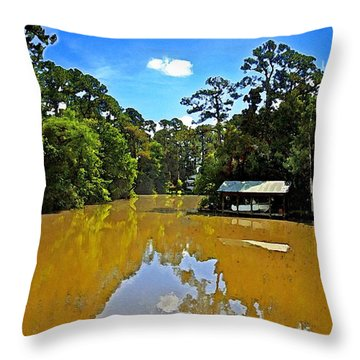 The Cold Hole Throw Pillow