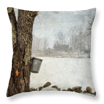 Collecting Sap For Making Maple Syrup Throw Pillow by Betty  Pauwels