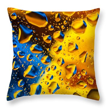 The Collision Throw Pillow by Bruce Pritchett