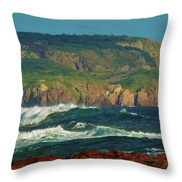 The Collonades Throw Pillow by Blair Stuart