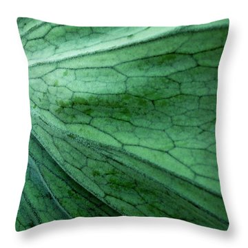 The Color Green Throw Pillow by Gwyn Newcombe